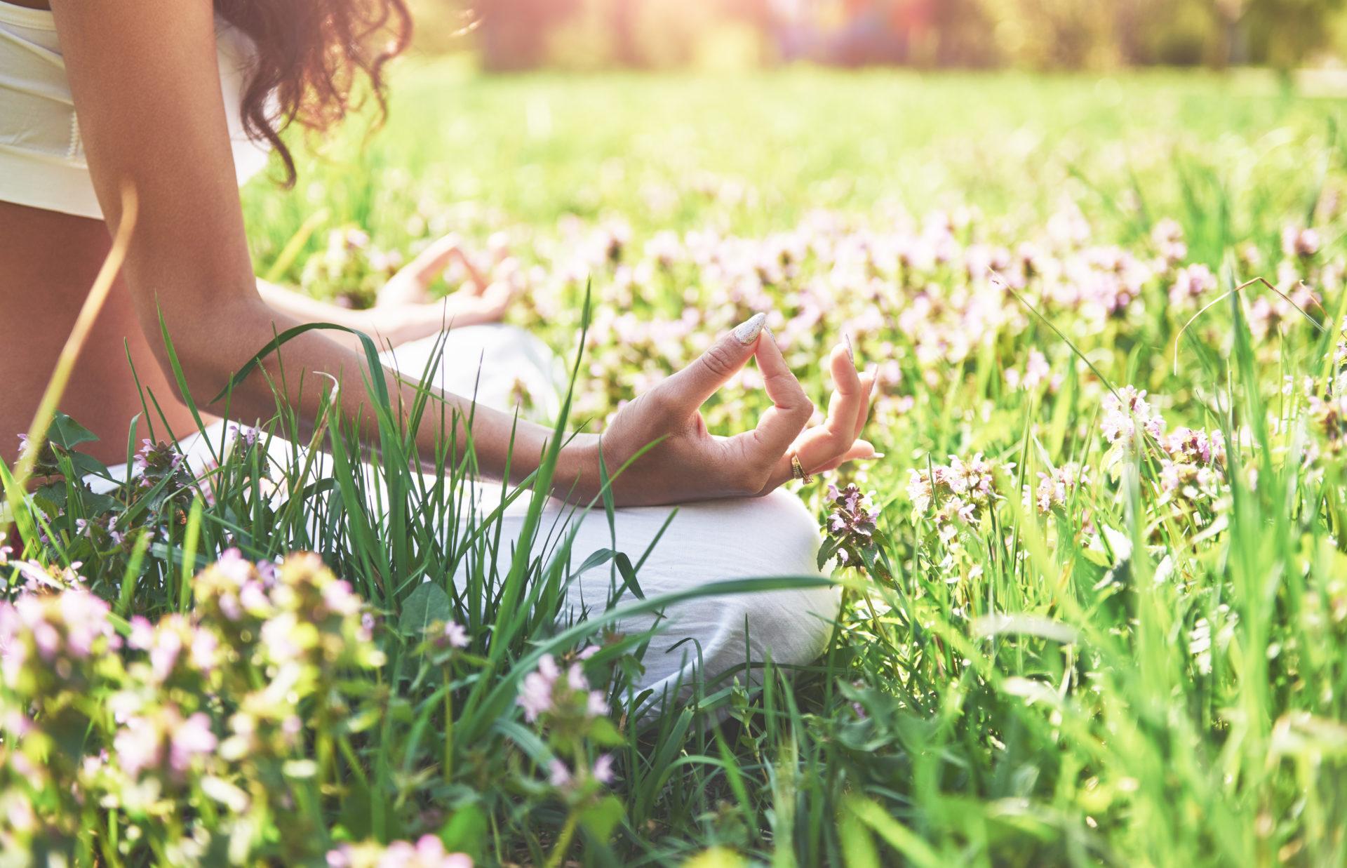 Image MBSR Lyon Séminaire été de méditation d'après le programme MBSR